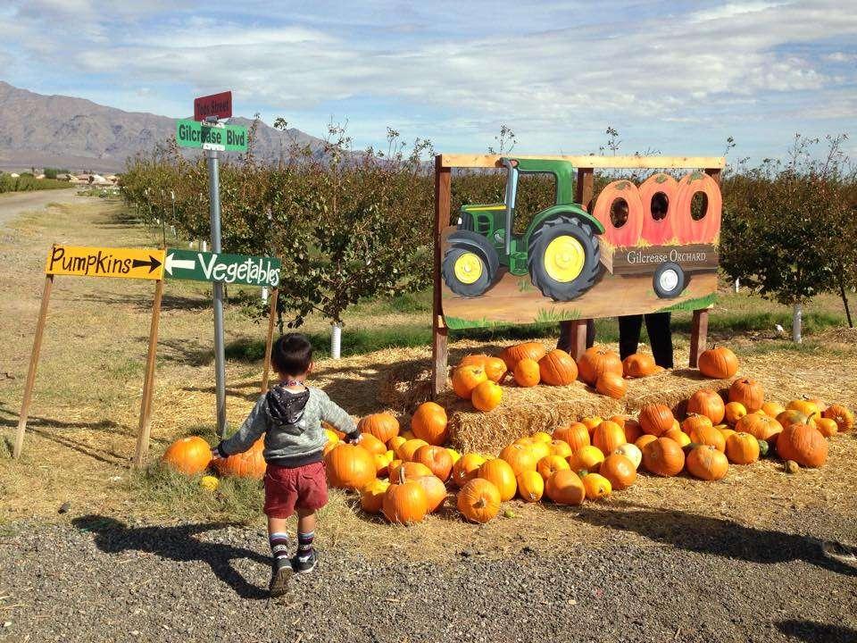 Las Vegas fall activities Gilcrease Ranch